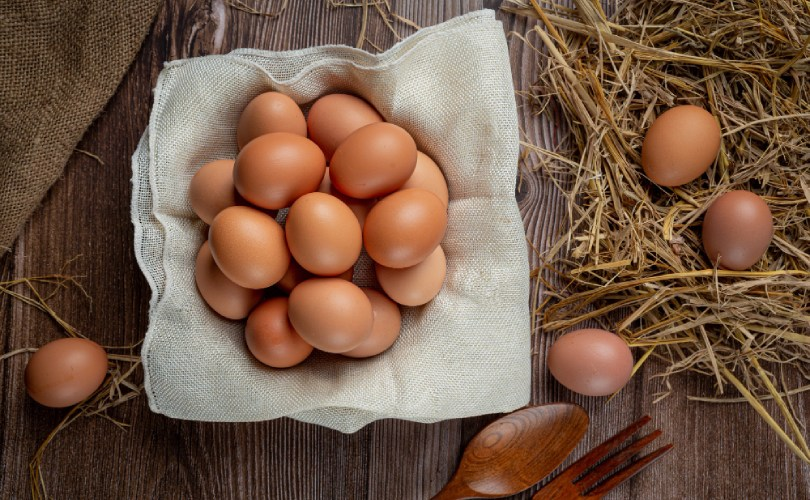 Eggs Human Foods For Dogs