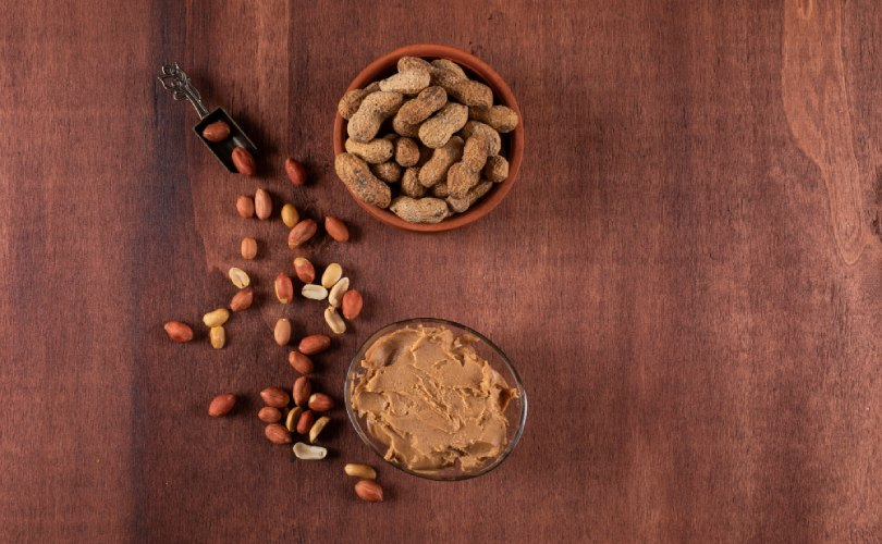 Peanut Butter Human Foods For Dogs